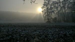 Zimni_honitba